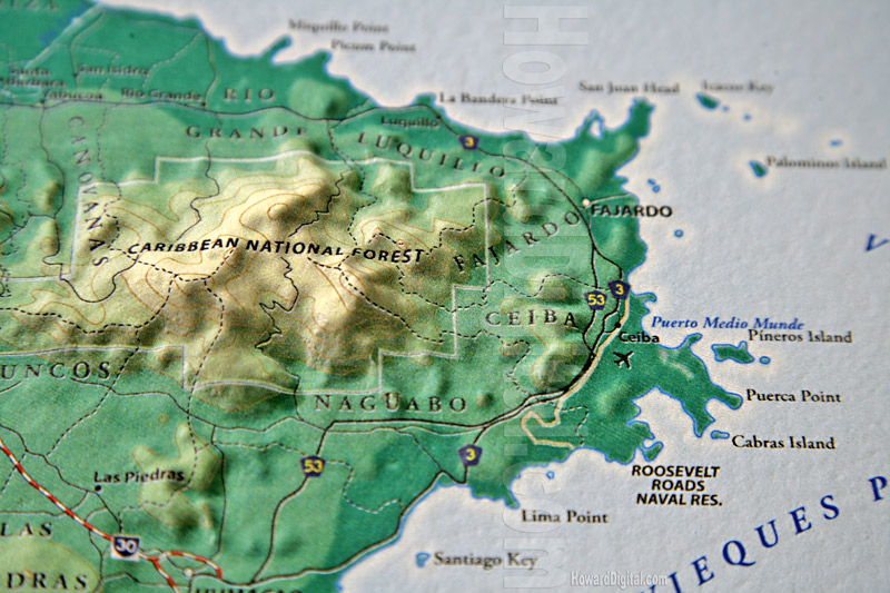 Caribbean Topographic Map.Caribbean National Forest Site Models Puerto Rico Site Model
