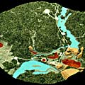 Geologic Model